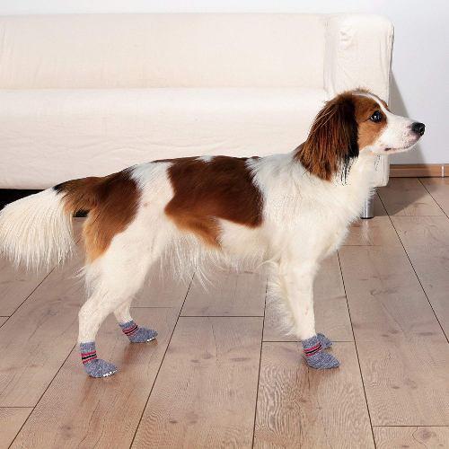trixie-dog-socks-antislip
