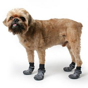 summit-trex-dog-boot