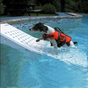 skamper-pet-pool-ramp-super