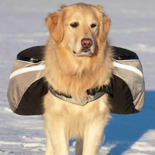 doggles-extreme-backpack