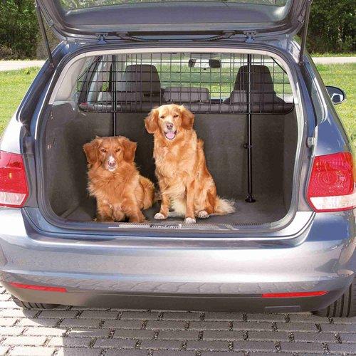 car-dog-grid