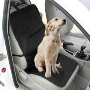 Car & Seat Protectors
