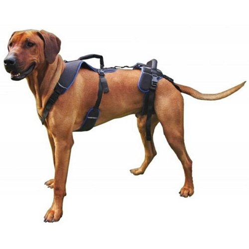 hol-pet-full-body-lift-harness